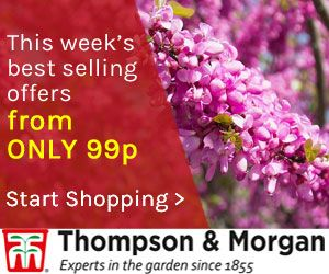 this weeks best selling offers large