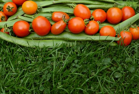 runner beans and tomatoes