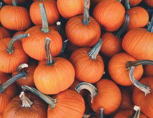 Autumn squashes