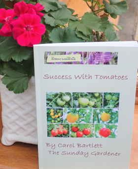 success with tomatoes book cover