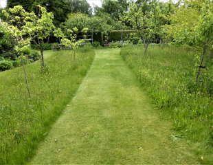 Informal lawn style
