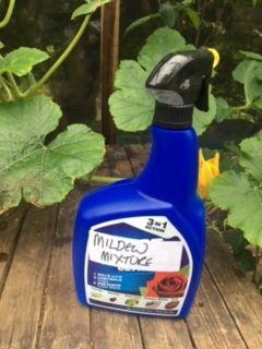 Mildew mixture