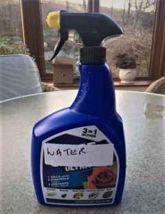 Home made plant spray