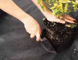 Weed supressing membrane