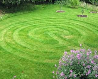 Lawn with Maze