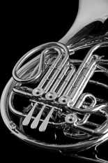 french horn bw