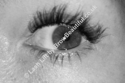 bfdb6a3786b Clients who choose this treatment can expect defined, emphasised and curled  eyelashes without the need to use mascara and/or eyelash curlers; ...
