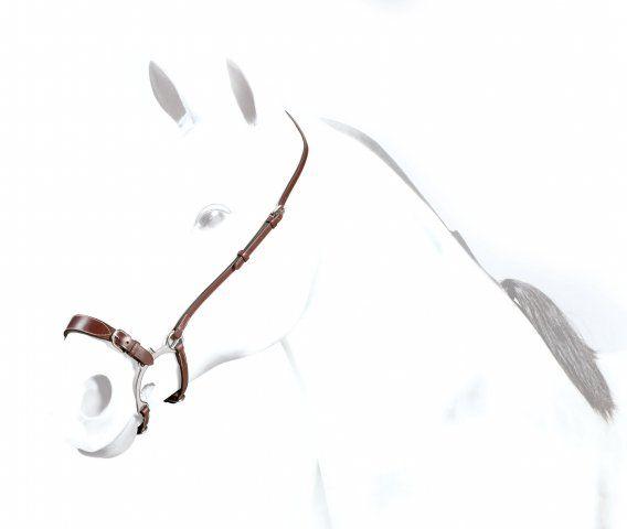 Equipe Combination /Lemmann Nosesband Cob