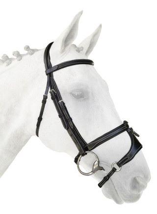 Silver Crown Adjustable X Noseband