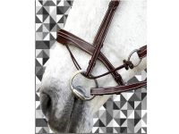 Silver Crown Valla Noseband