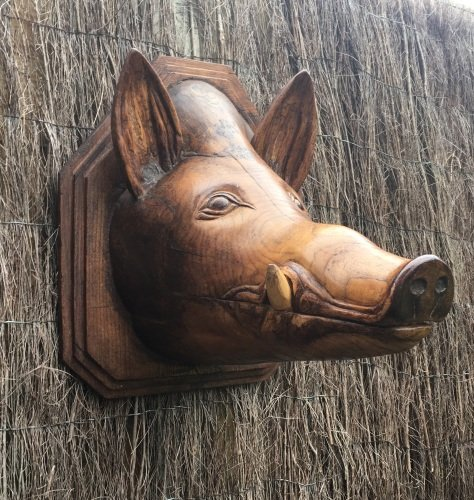 A Fun Folk Carved Elm Butchers Sign Depicting a Boars Head Circa 1900