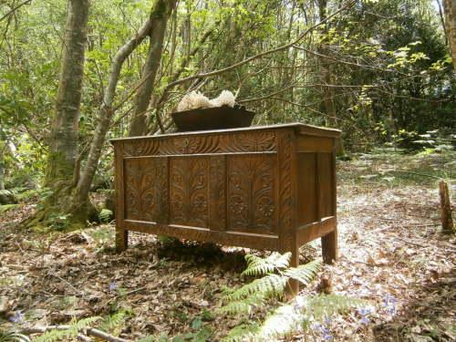 An Elegant Charles II Carved Oak Coffer circa 1680 Lancashire Region