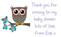 Baby Boy Owl Baby Shower