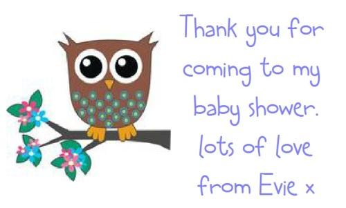 Baby Boy Owl Baby Shower
