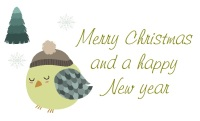 Christmas Bird design 272