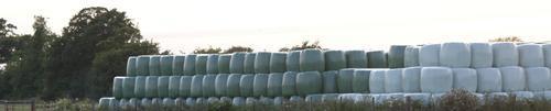 Large round bales stacked image