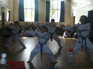 brown belts 2