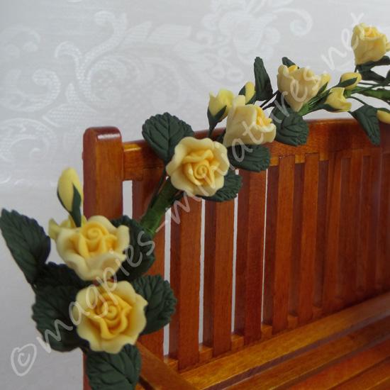 Yellow Climbing Roses