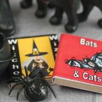 Two Spooky Halloween Books