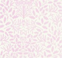 Wallpaper Acorns, Pink on White background