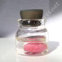 Brain specimen jar
