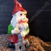 Garden Gnome 1