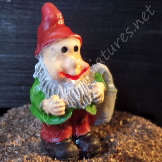 Garden Gnome 3