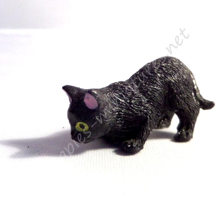 Black Cat - D