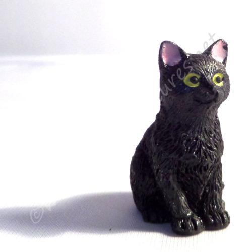 Black Cat - E
