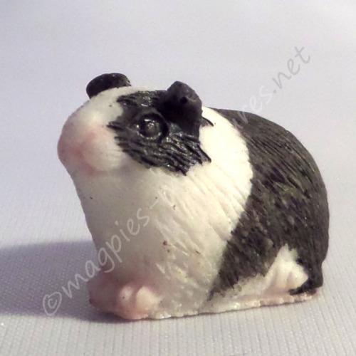 Guinea Pig -h