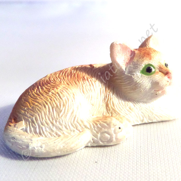 Ginger and White Cat A