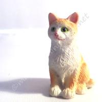 Ginger and White Cat E