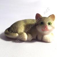 Tabby Cat A