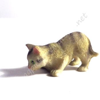 Tabby Cat D