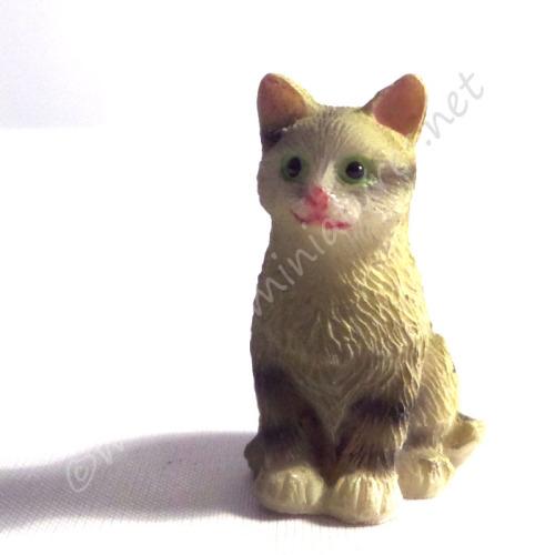 Tabby Cat E