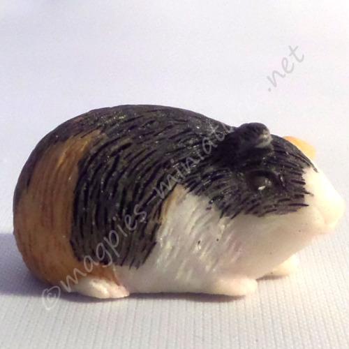 Guinea Pig -b
