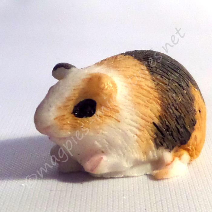 Guinea Pig -L