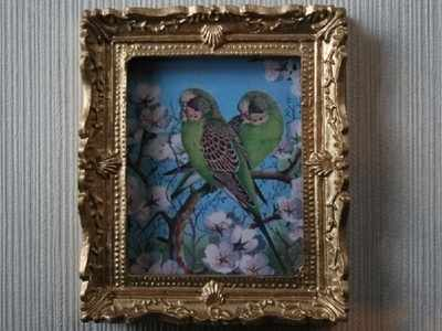 Picture - Budgies