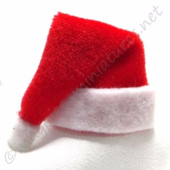 Red Christmas Santa Hat