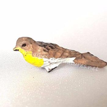 Garden Bird - Western Kingbird