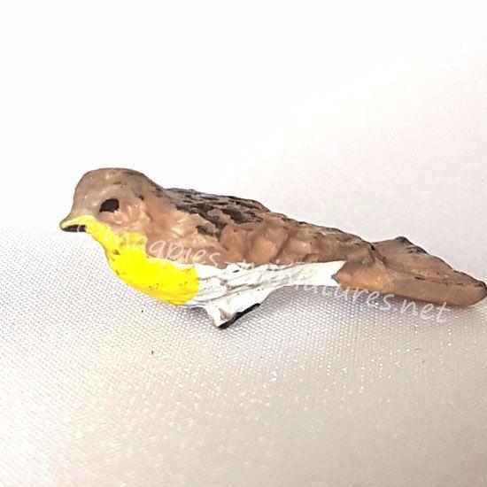 Garden Bird- Western Kingbird