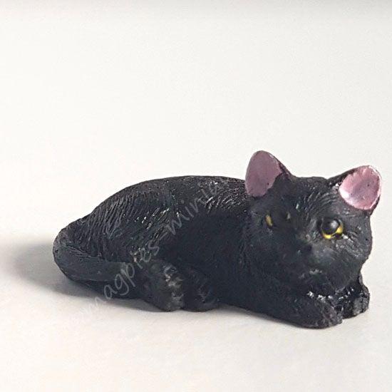 Black Cat - A