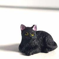 Black Cat - B