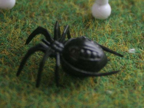 Creepy Crawly Spider