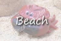 <!-- 016 -->Beach