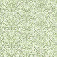 Wallpaper Acorns, Green on White background