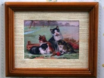 Picture - Cats