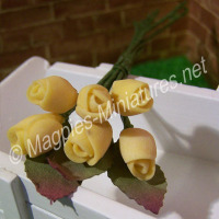 Yellow Tulip Flower Stems