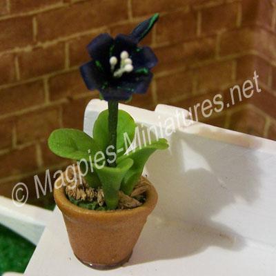 Single Flower - Blue