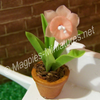 Single Flower - Pink